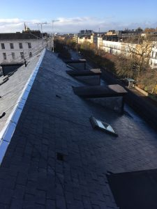 Roofing Paisley